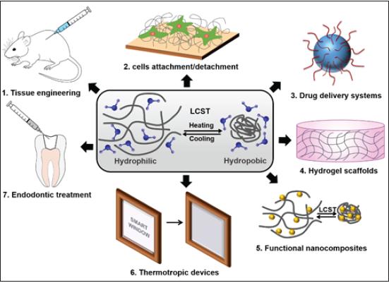 Lupinepublishers-openaccessjournals-Nanotechnology-nanomedicine